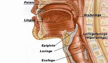 cancer laringian stadiu 4 cancer cerebral calivita