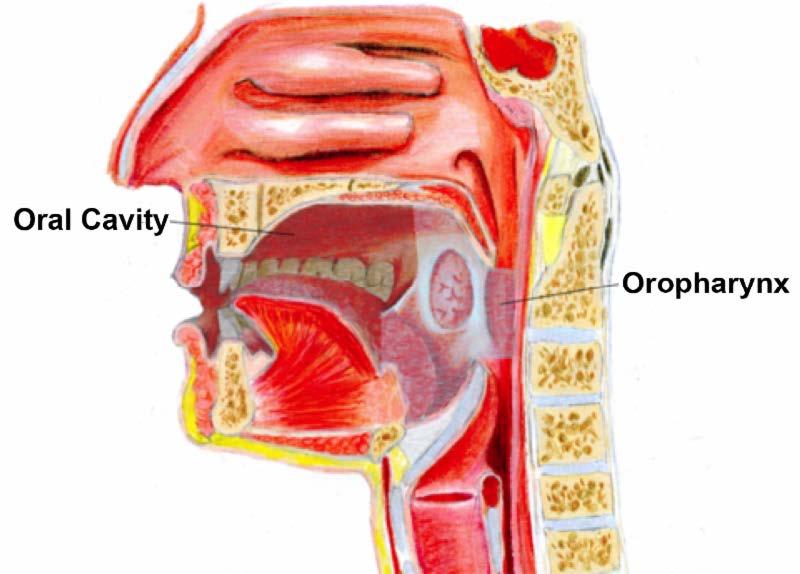 hpv positive base of tongue cancer medicamento para virus del papiloma humano en hombres