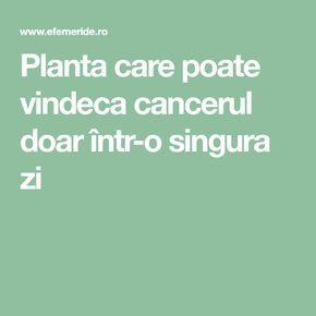 Lamaia si bicarbonatul de sodiu, o combinatie puternic vindecatoare | primariabeuca.ro