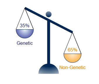 THE IMPORTANCE OF THE HEREDITARY RISK FACTORS IN THE NEOPLAZIC DISEASE
