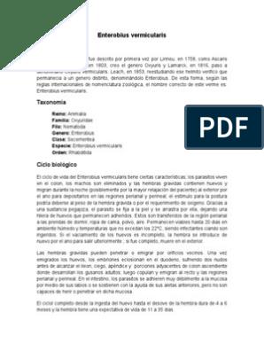 Enciclopedia Plantelor Folosite in Terapia Veterinara