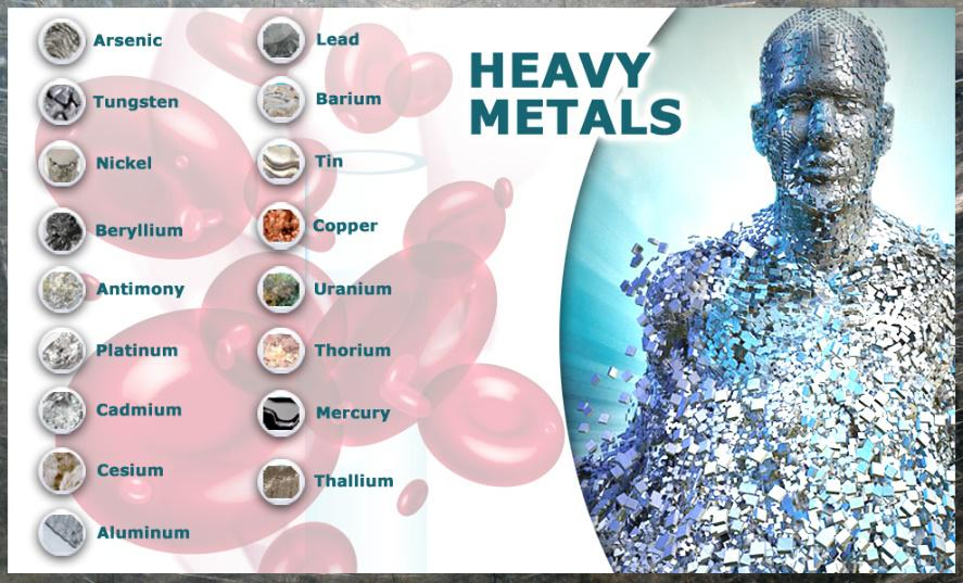 Metalele grele și impactul lor asupra organismului