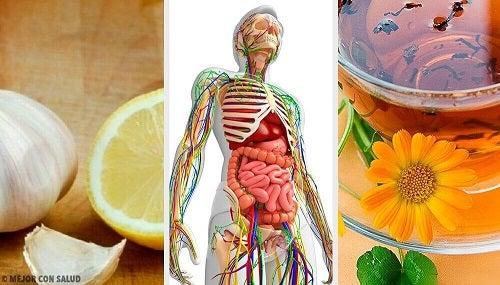 Detoxifierea limfatica