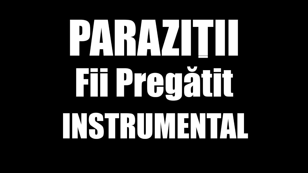 Parazitii – Fii pregătit (versuri)