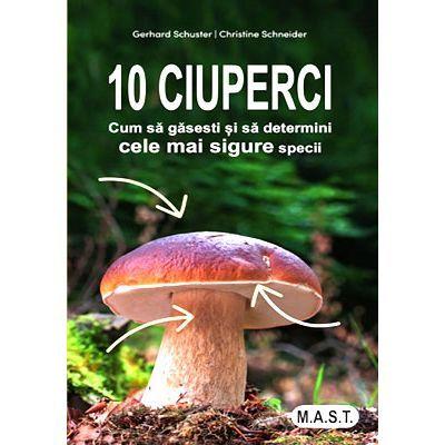 10 ciuperci comestibile