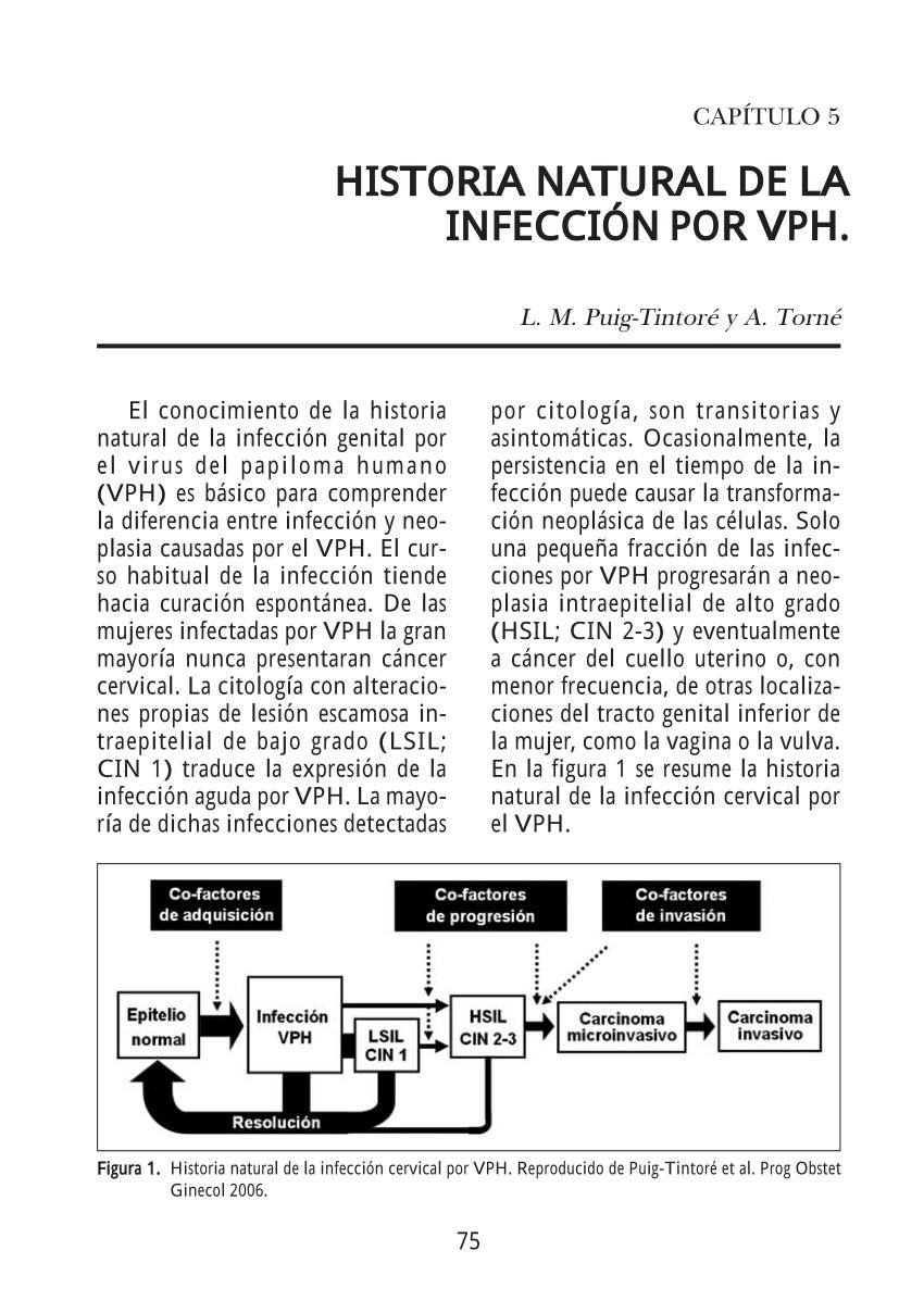frottis pour papillomavirus deteccion papiloma virus en hombres