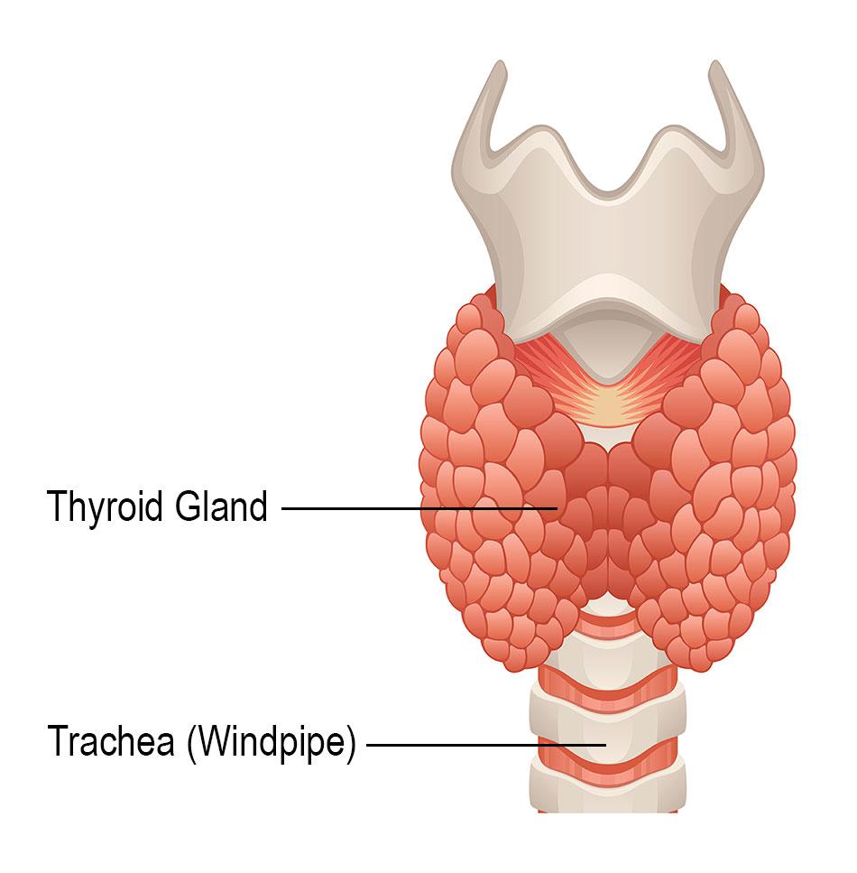 papillary thyroid cancer ear pain
