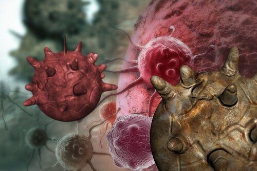 Iată planta care ucide celulele canceroase în 16 ore | DCNews