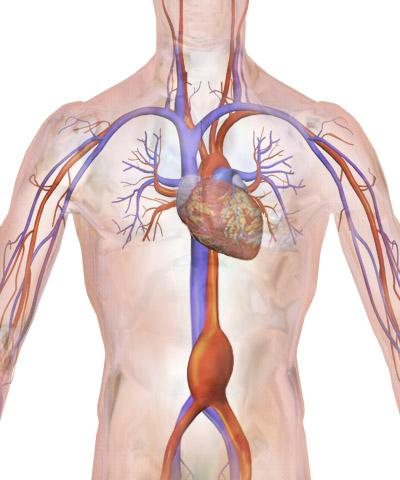 abdominal cancer screening