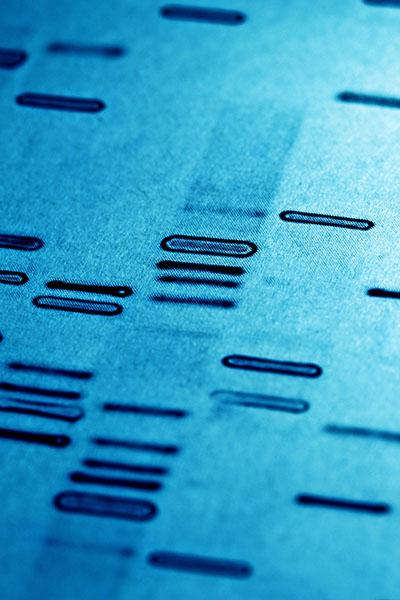 cancer genetic diagnostic tests
