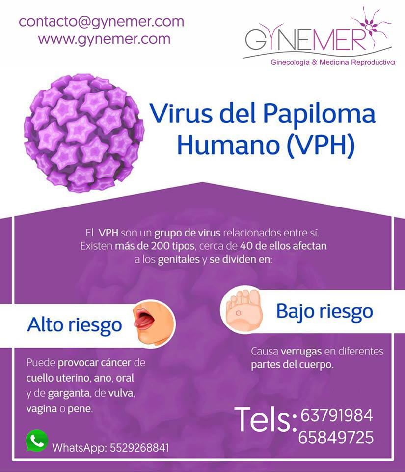papiloma humano ginecologia warts treatment uk