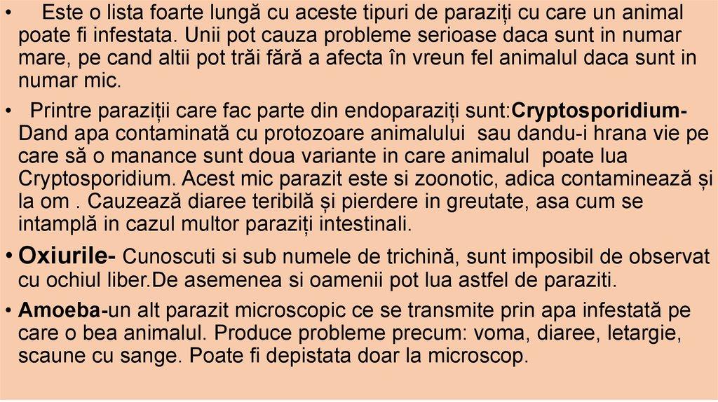 antihelmintice - Traducere în engleză - exemple în română | Reverso Context