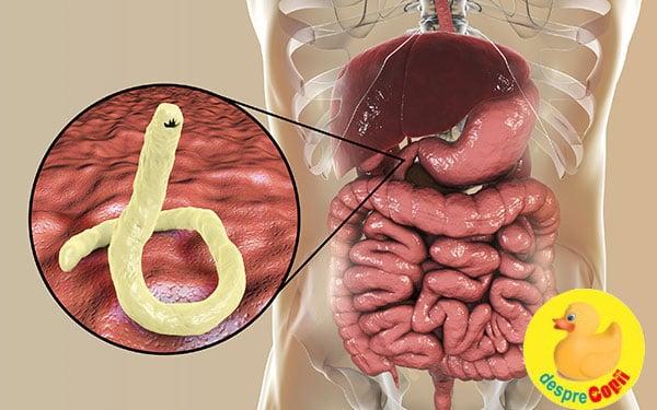 suplimente detoxifiere limfatica cheloo macanache