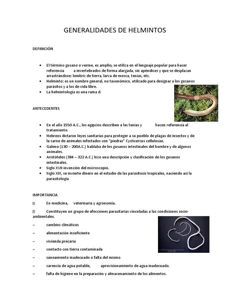 helmintos definicion anemie 8 2