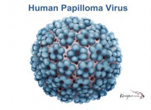 does hpv prevent breast cancer il papilloma virus da sintomi