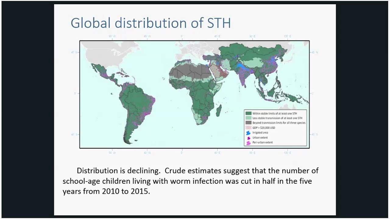 helminth infection atlas
