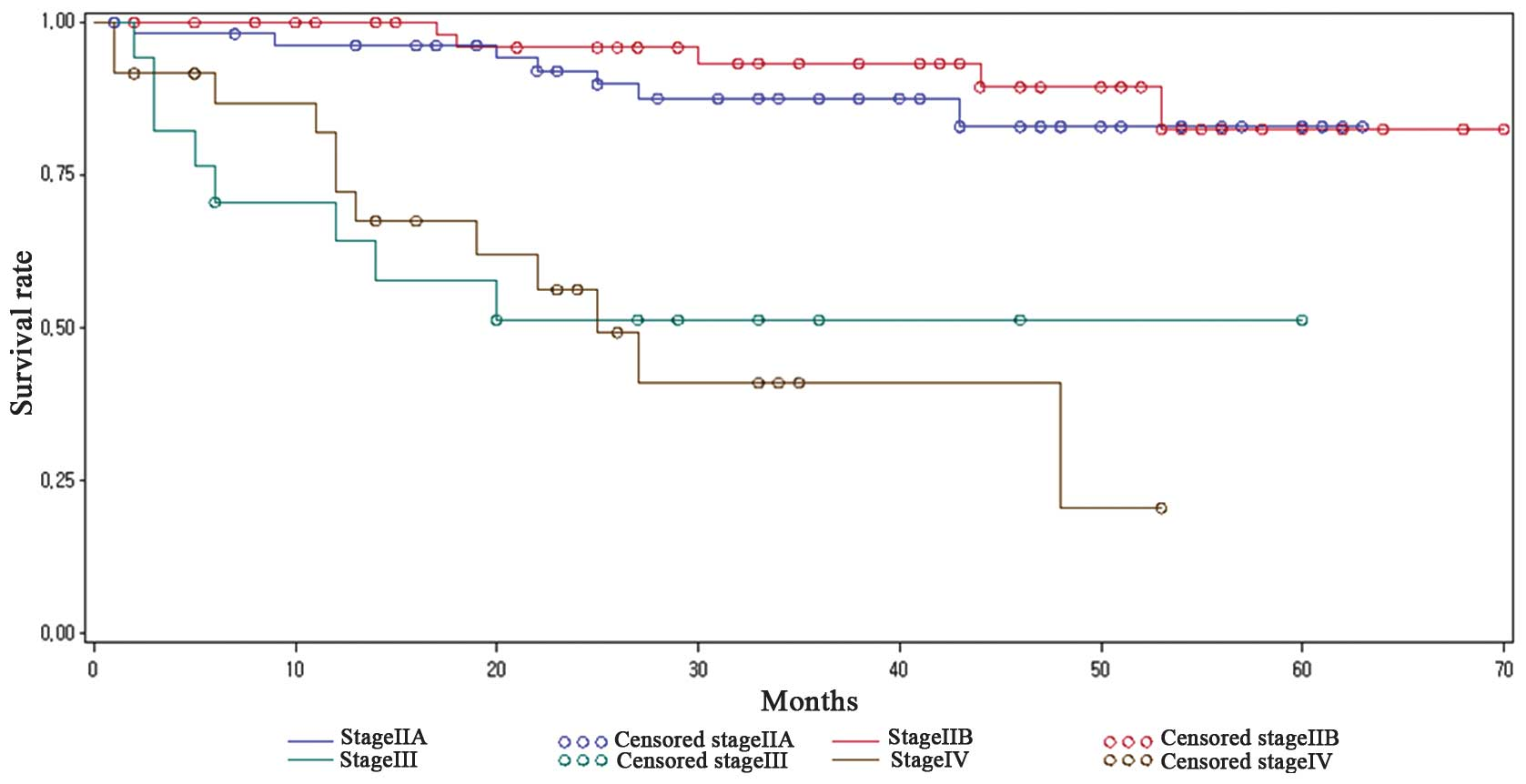 cervical cancer from hpv survival rate cancer of endocrine system