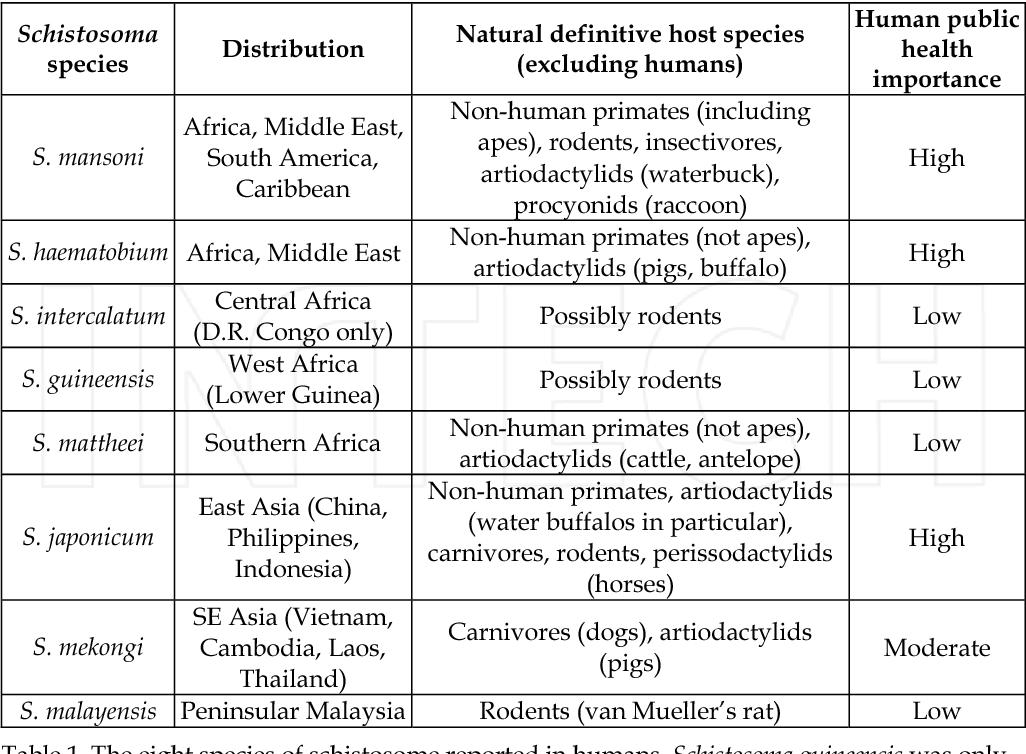 is schistosomiasis a zoonotic disease papiloma humano en hombres riesgos