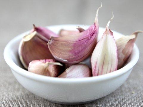 tratament homeopat pentru paraziti intestinali