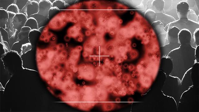 papillomavirus katt