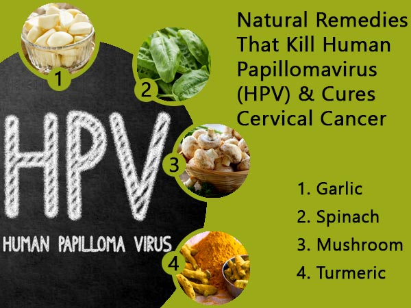 herbal treatment of human papillomavirus