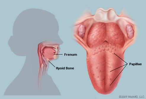 hpv tongue warts que es cancer linfoma de hodgkin