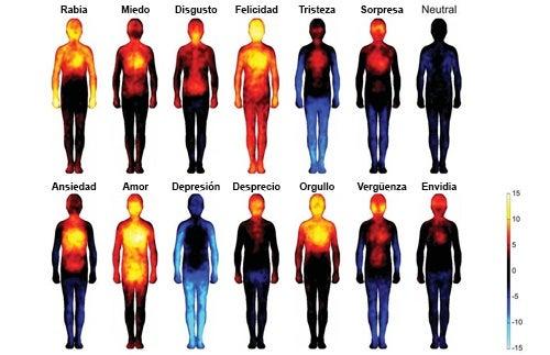 cancer cerebral significado emocional warts on hands causes