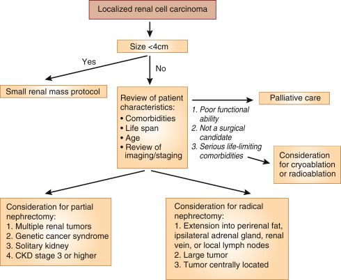 renal cancer of treatment