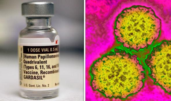 Fișier:Papilloma Virus (HPV) primariabeuca.ro - Wikipedia
