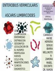 enterobius vermicularis generalidades