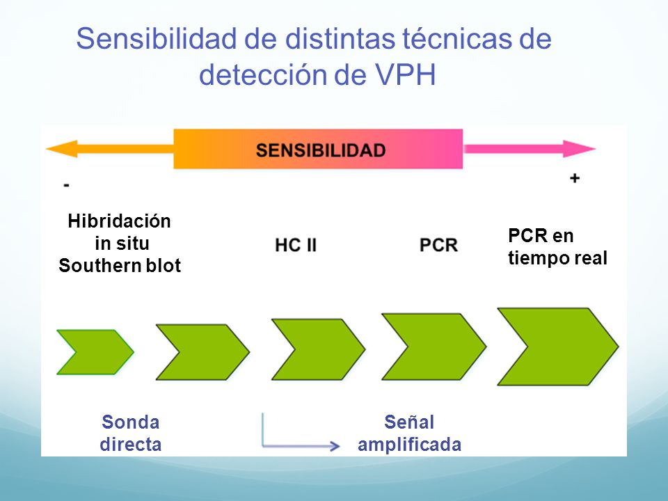 papiloma virus humano por pcr tiempo real hpv cancer progression
