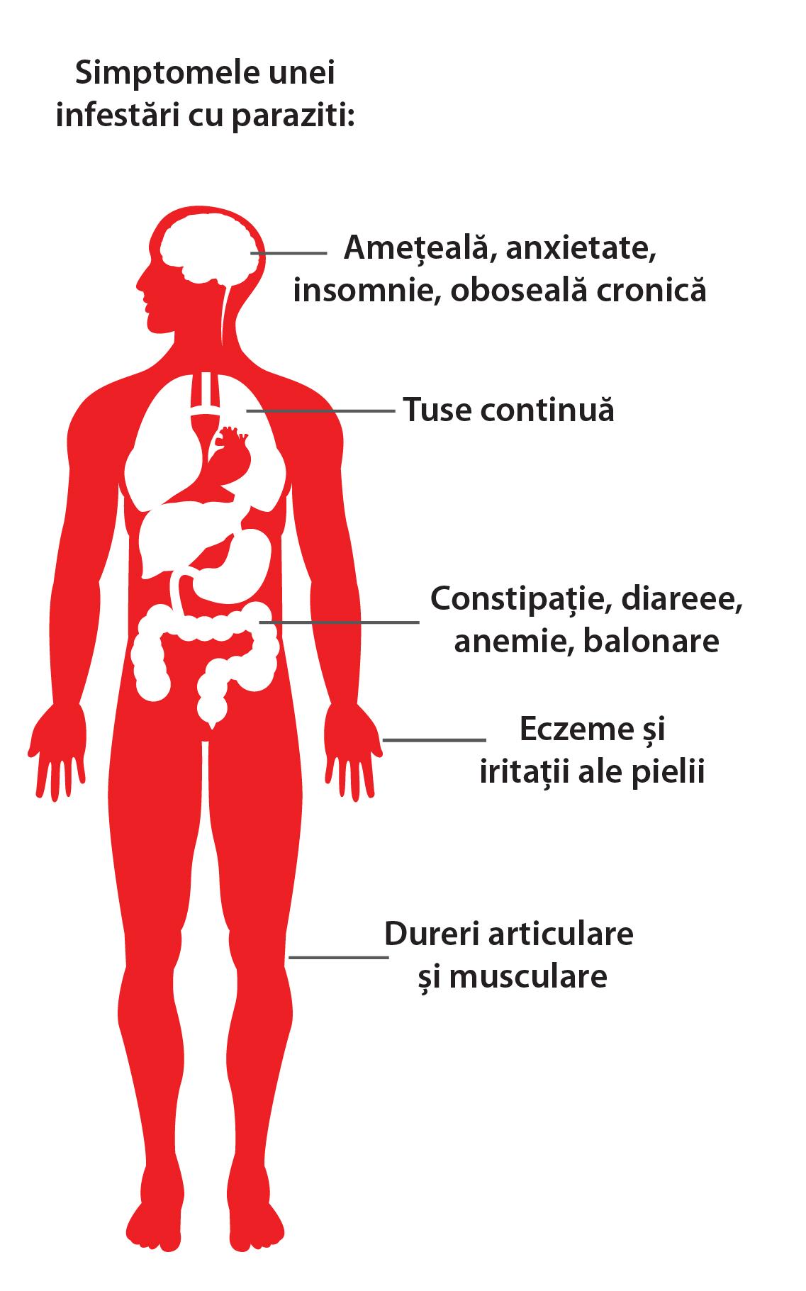 Parazitozele intestinale: giardioza si ascaridioza | Regina Maria