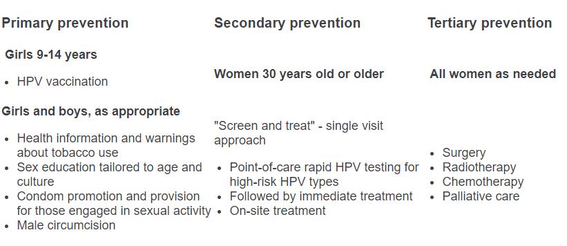 cervical cancer high risk hpv cancer la san stadii