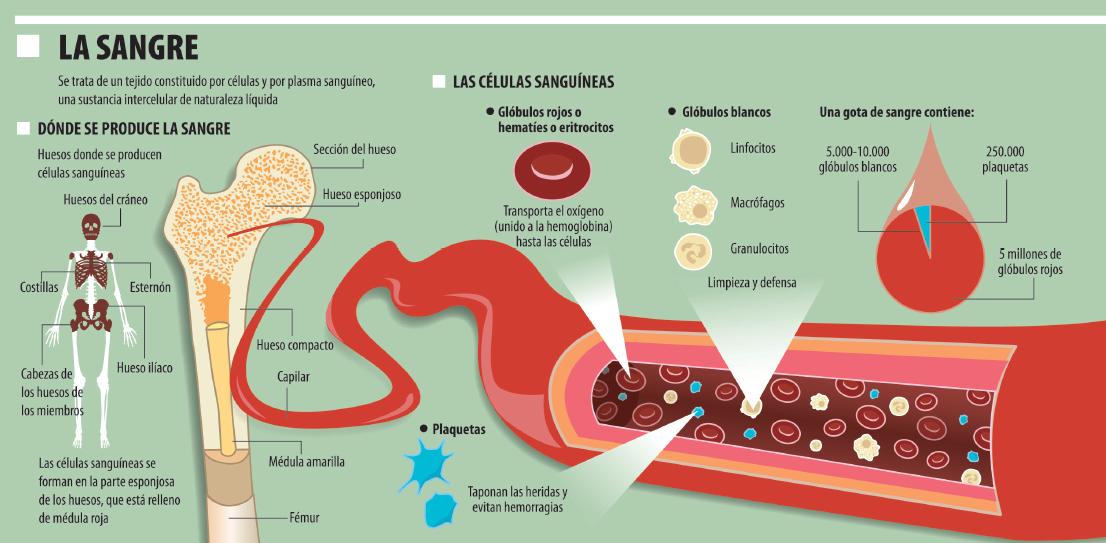 anemia xarelto