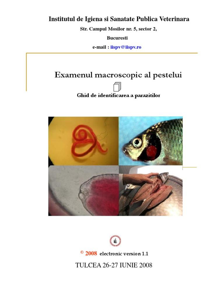 parazitii pestelui