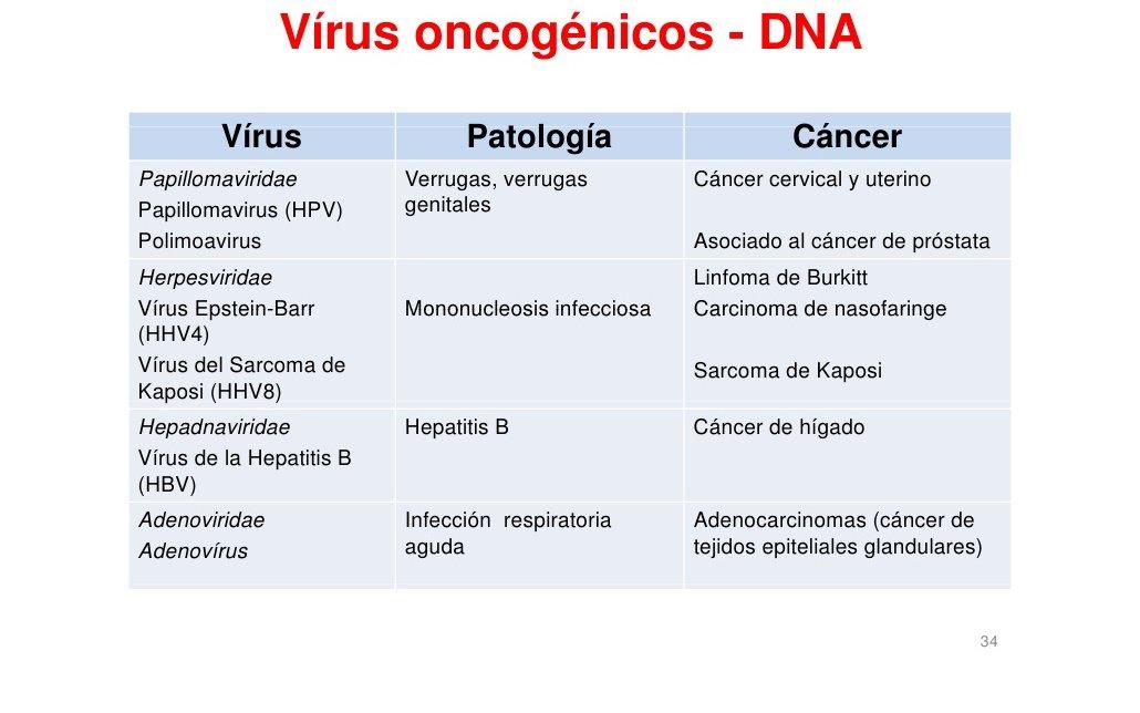 virus hpv la b?nh gi