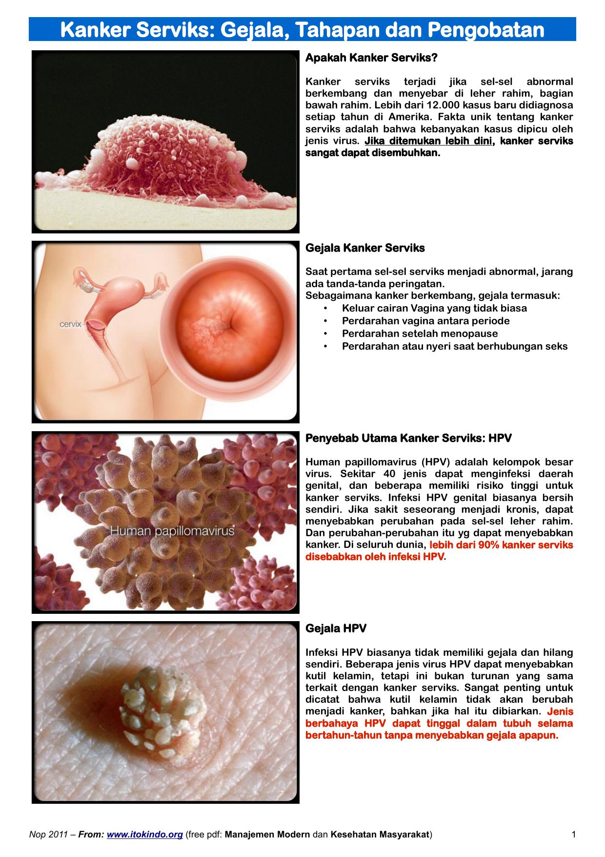cancer de sange cauze mode transmission papillomavirus humain