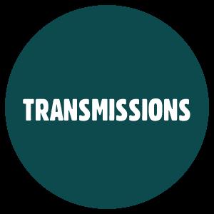 mode transmission papillomavirus humain can hpv high risk go away