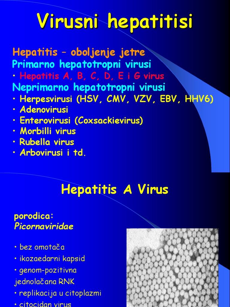 virusi jetre