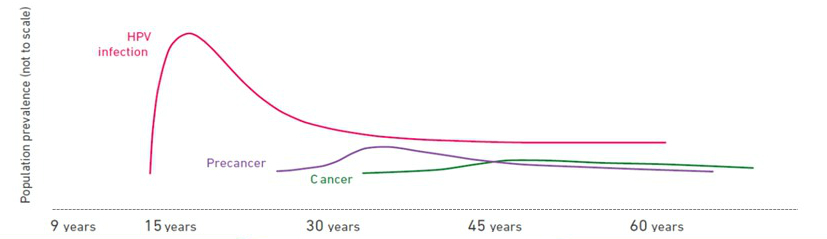 risk of cervical cancer if hpv positive ovarian cancer questions to ask your oncologist