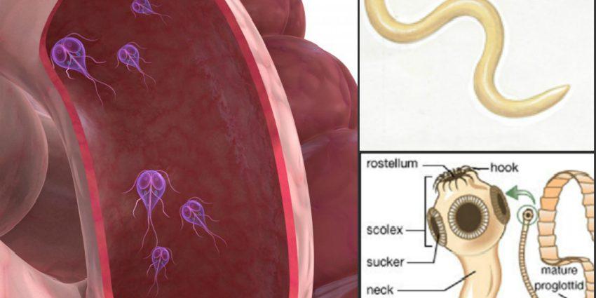sarcoma cancer facts basal cell papilloma icd 10