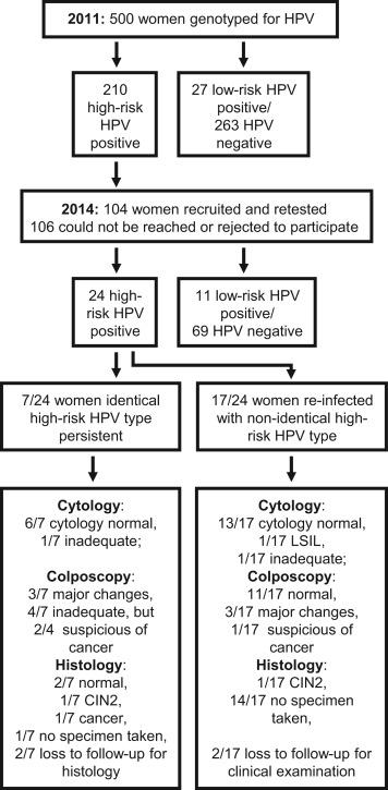gastric cancer kit human papillomavirus (hpv) high-risk types