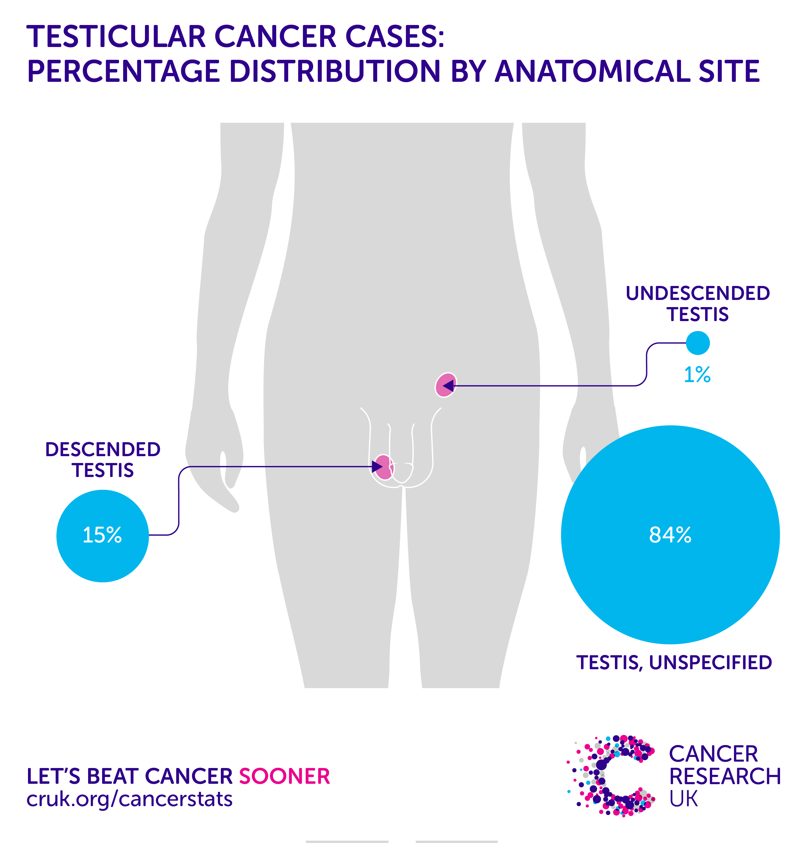 testicular cancer uk statistics peritoneal cancer brca1