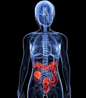 cancer colon bilan sanguin recurrent respiratory papillomatosis diagnosis