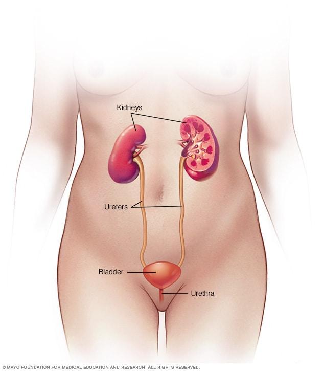 cancer uretra feminina sintomas
