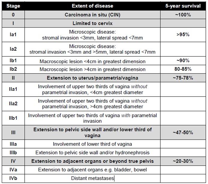 cervical cancer tnm staging