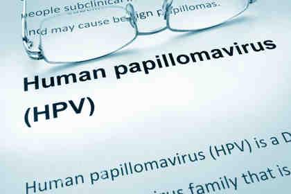 papilloma virus allugola