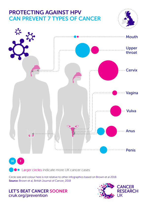 hpv causes male cancer