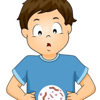oxiurii pot ajunge la creier