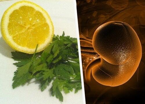 detoxifierea rinichilor cu patrunjel